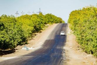 Președintele țării a inspectat lucrările de reabilitare a drumului Basarabeasca - Ceadâr-Lunga