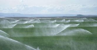 Igor Dodon: Vom subvenționa agricultorii care vor investi în sistemele de irigare