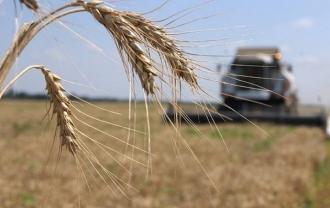 Guvernul propune să fie continuat programul de rambursare a TVA pentru agricultori
