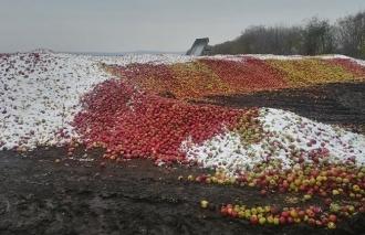 Igor Dodon: Vă mai amintiți cum din cauza unei politice antiruse în 2015 înghețau merele pe copaci? Noi avem ce pierde!