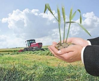 Ministru agriculturii, despre exportul de grâu: Acesta nu este motiv de panică în țară, pentru că țara este asigurată din punct de vede alimentar