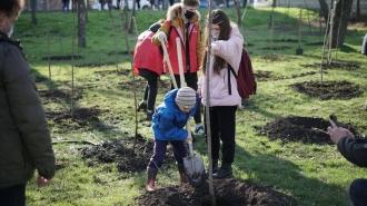 Peste jumătate de milion de copaci au fost sădiți de Garda Tânără a PSRM