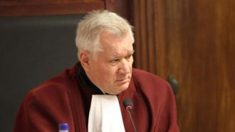 Un ex-președinte al Curții Constituționale critică modul în care magistrații au examinat demiterea Domnicăi Manole