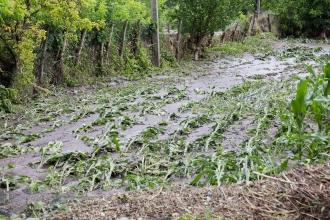 Prăpăd provocat de ploi în 17 raioane