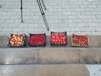 Lăzi cu fructe și legume, pe scările Președinției! Agricultorii protestează pentru că Maia Sandu nu le-a dat ajutorul promis