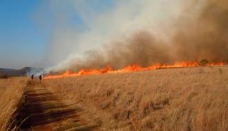 20 de incendii de vegetație în 24 de ore