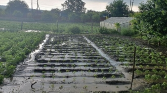 Deputații PAS au respins propunerea BCS cu privire la alocarea a peste 51 de milioane de lei pentru agricultorii care au înregistrat pagube