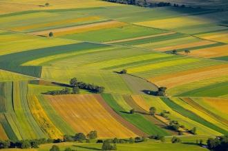 Deputații PAS refuză să discute Codul Funciar care interzice vânzarea pământurilor către străini