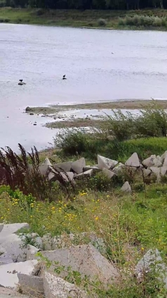 Cum arată, azi, r.Nistru: S-au format mai multe insule, apa scade pe zi ce trece