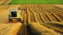 Fermierii moldoveni solicită Guvernului transparență în formarea prețurilor ...