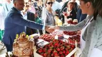 Igor Dodon a participat la Festivalul Căpșunelor și Mierii din satul Sadova