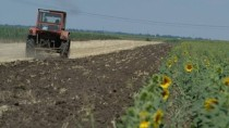 Agricultorii și oamenii de știință sunt împotriva inițiativei Guvernului de ...