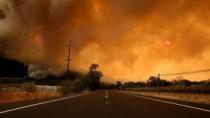 Cel puţin 21 de oameni au murit în urma incendiilor de vegetaţie din Califo ...
