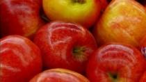 Moldova a exportat anul curent o cantitate record de mere