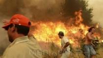 Incendii în California: Aproximativ 200.000 de persoane au primit ordine de ...