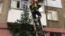 Un copil din Chișinău, salvat de pompieri, dintr-un apartament cuprins de f ...