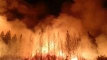 California, în flăcări. Numărul morţilor a crescut la 31. Focul ameninţă co ...