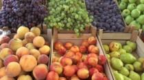 Drumul fructelor din Moldova