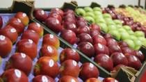 Igor Dodon către agricultori: 240 mii tone de mere anul trecut s-au dus în  ...