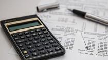 Bugetul Public Național pentru anul 2021 trebuie votat în decembrie, spune  ...